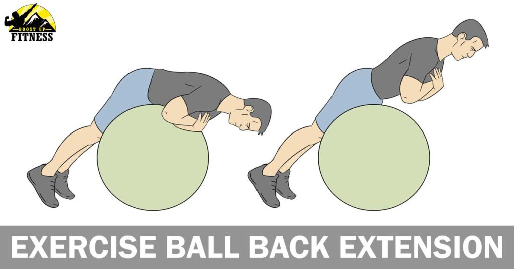 Exercise ball back extensions
