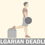 The Bulgarian Deadlift: Exercise guide, Benefits, and Tips
