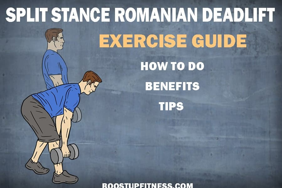 Split Stance Romanian Deadlift Exercise Guide