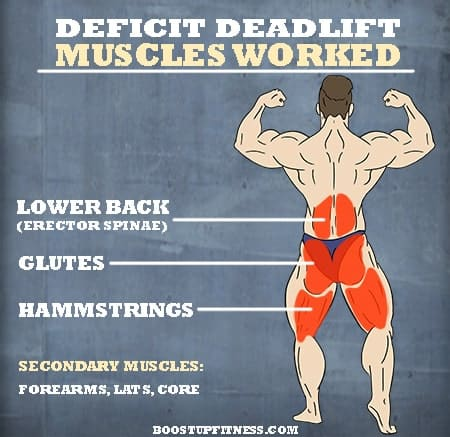 deficit deadlift muscles worked