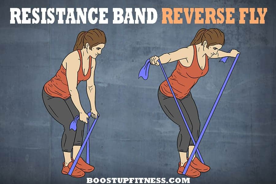 Resistance band reverse fly