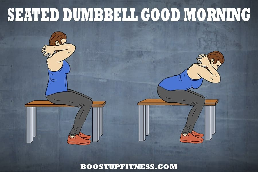 Seated dumbbell good morning